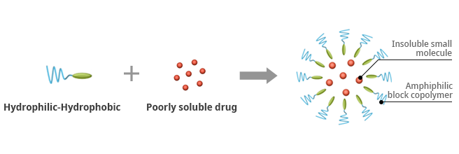Hydrophilic-Hydrophobic + Poorly soluble drug